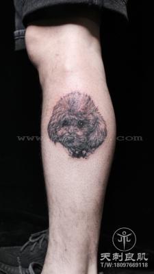 小腿写实纹身泰迪宠物纹身