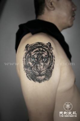 大臂写实老虎纹身