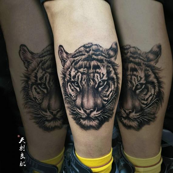 克拉玛依写实老虎纹身